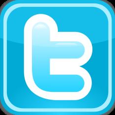 твиттер лого visionural.com